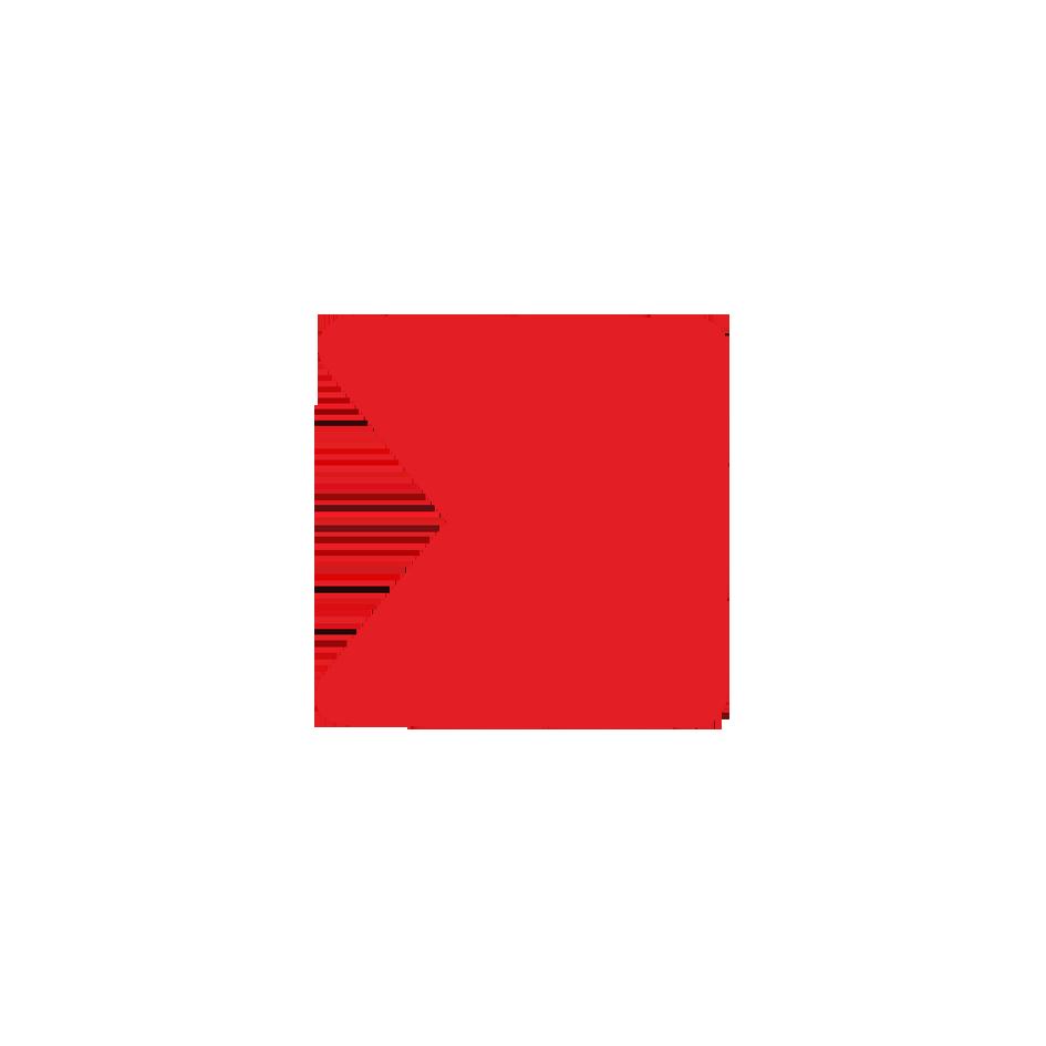 logo medytox russia